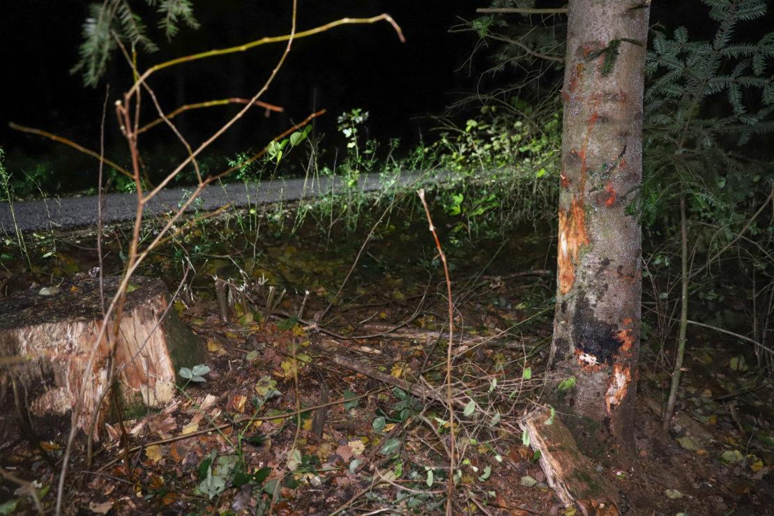 Alkolenker (20) kracht bei Verkehrsunfall in Schleißheim gegen Baum