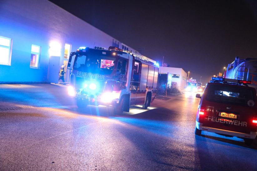 Einsatz der Feuerwehr nach gemeldetem Gasgeruch in Wels-Neustadt