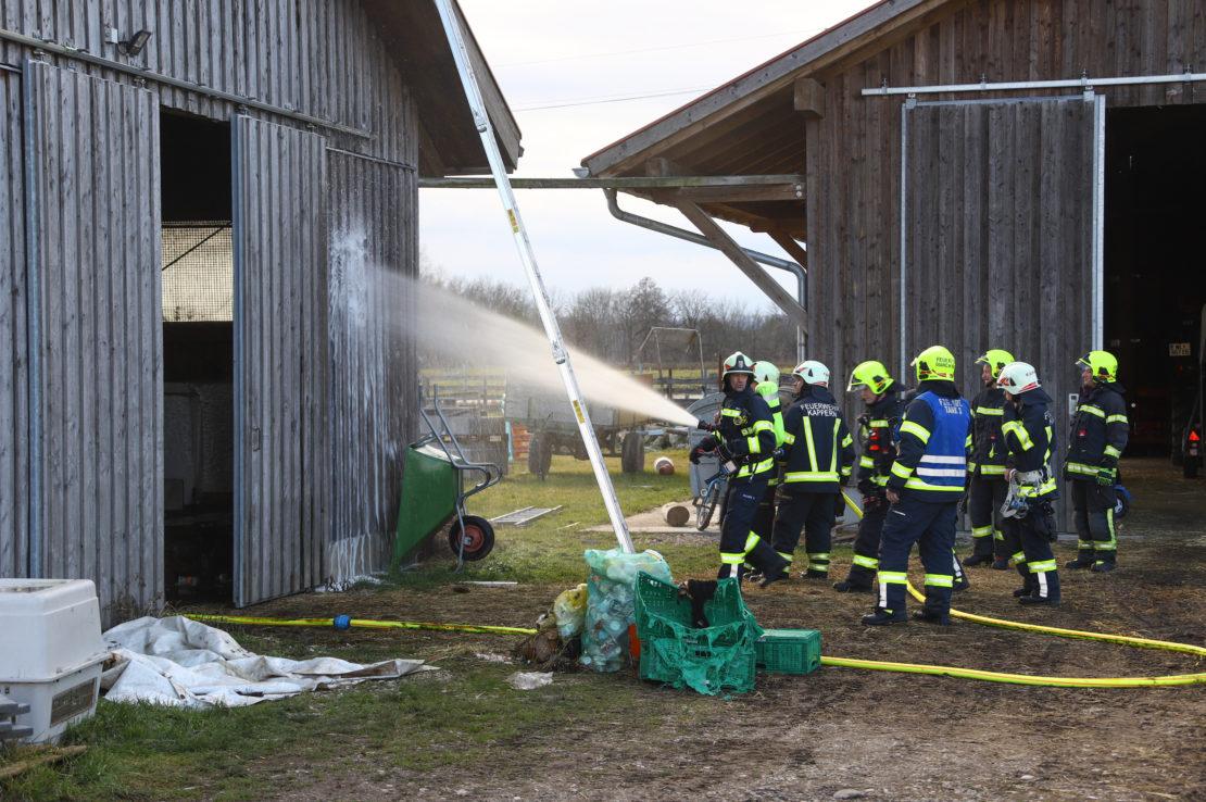 Brand im Ziegenstall eines Bauernhofes in Marchtrenk rechtzeitig entdeckt und gelöscht