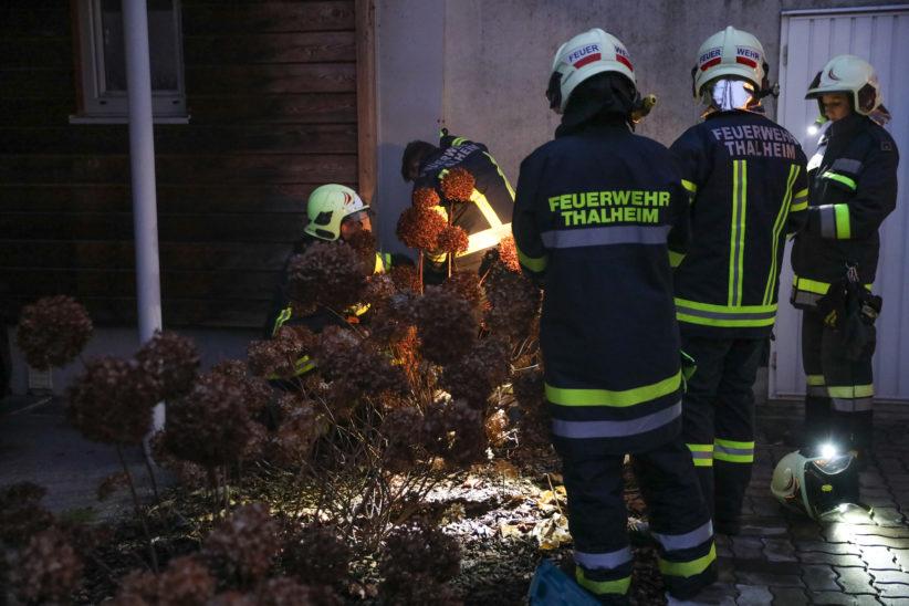 Katze zwischen Garage und Hausfassade - Feuerwehr zur Tierrettung nach Thalheim bei Wels alarmiert