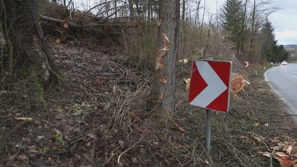 Schwer verletzt: Autolenker wollte bei Krenglbach umgestürztem Baum ausweichen und kracht gegen Baum