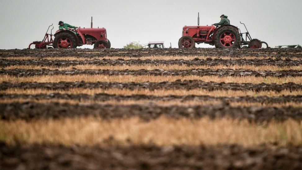 Neue Online-Plattform soll Bauern helfen, Arbeitskräfte zu finden