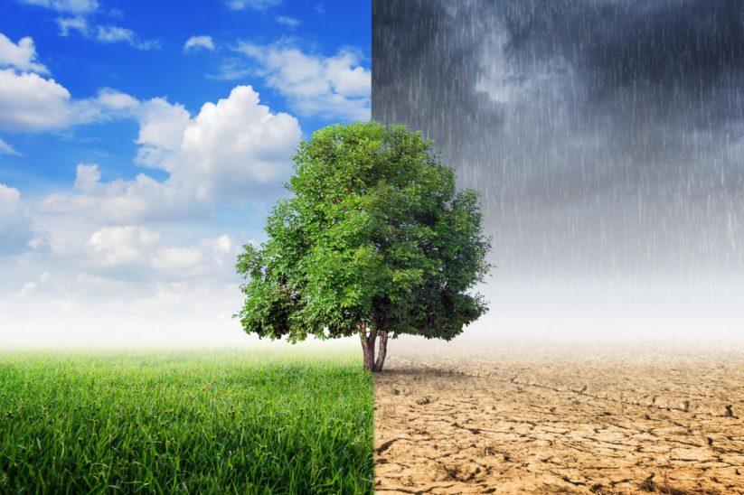 Auswirkungen auf das Klima sind marginal