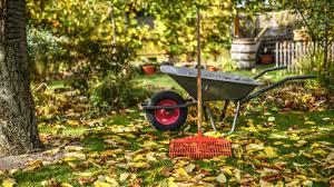 Pensionistenverband: Nicht Bau- und Gartenmärkte stürmen