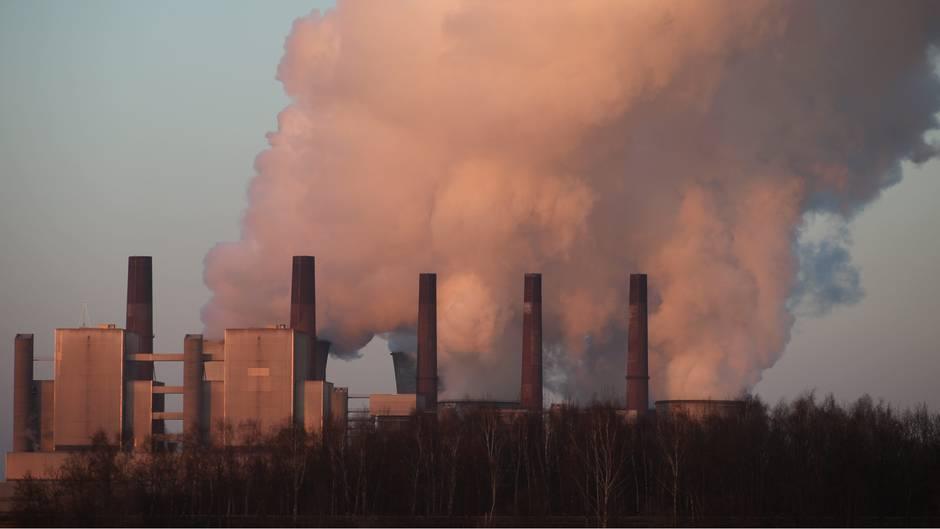 Weniger Luftverschmutzung vermeidet 11.000 Todesfälle