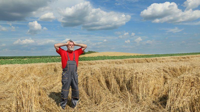 Bauern in EU können auf zusätzliche Coronahilfen hoffen
