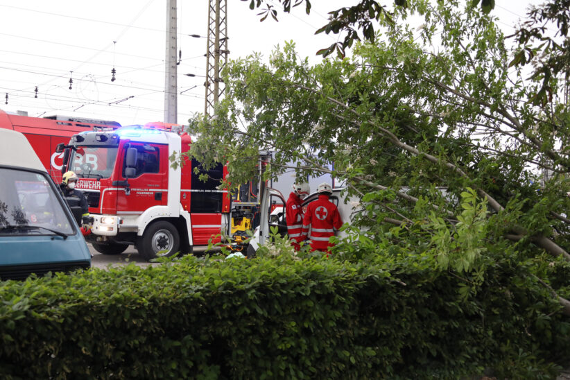 Personenrettung: Baum stürzt in Wels-Neustadt während Gewitter auf parkenden Kleintransporter