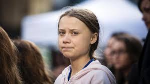 Thunberg kritisiert brasilianischen Umweltminister
