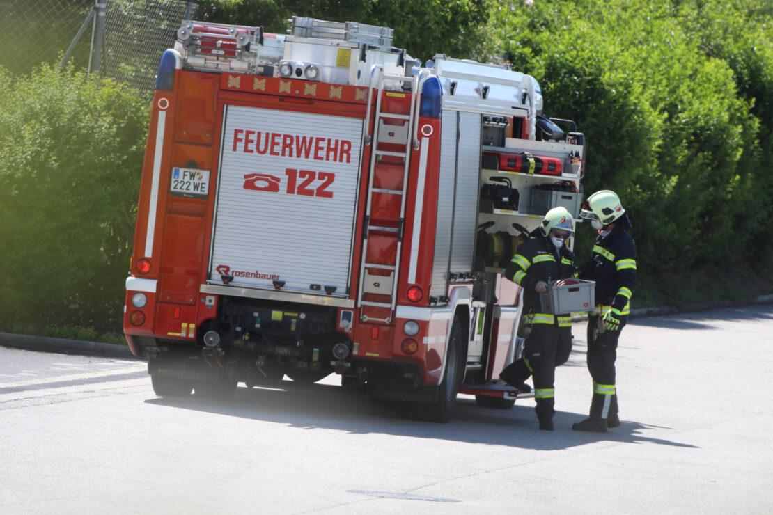 Reh eingeklemmt: Feuerwehr zu Tierrettung auf Firmengelände nach Wels-Neustadt alarmiert