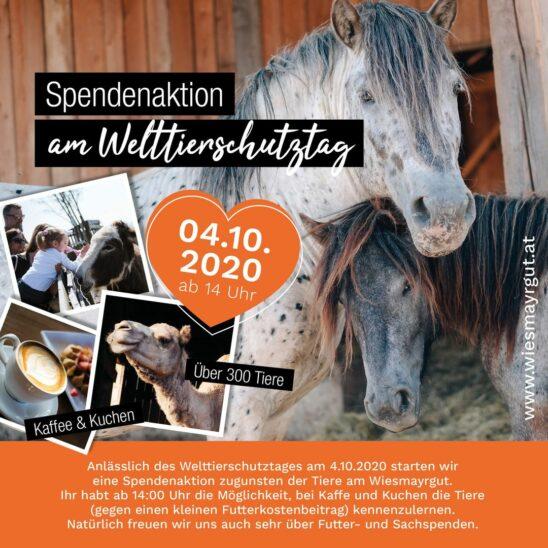 WIESMAYRGUT SPENDENAKTION am Welttierschutztag
