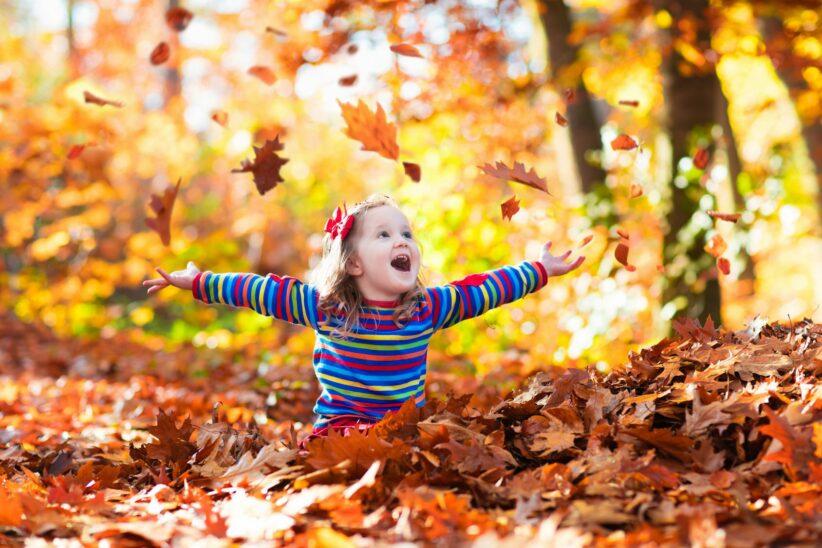 Herbstferien in Wels