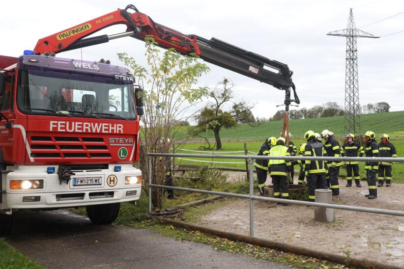 Pferd konnte nach Sturz in einen Brunnenschacht in Gunskirchen nur mehr tot geborgen werden