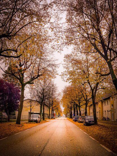 Herbst in Wels