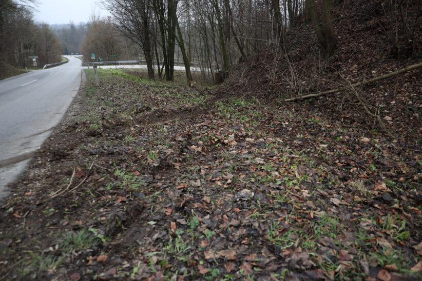 Auto gegen Bäume: Alkolenker bei Verkehrsunfall in Steinerkirchen an der Traun schwer verletzt