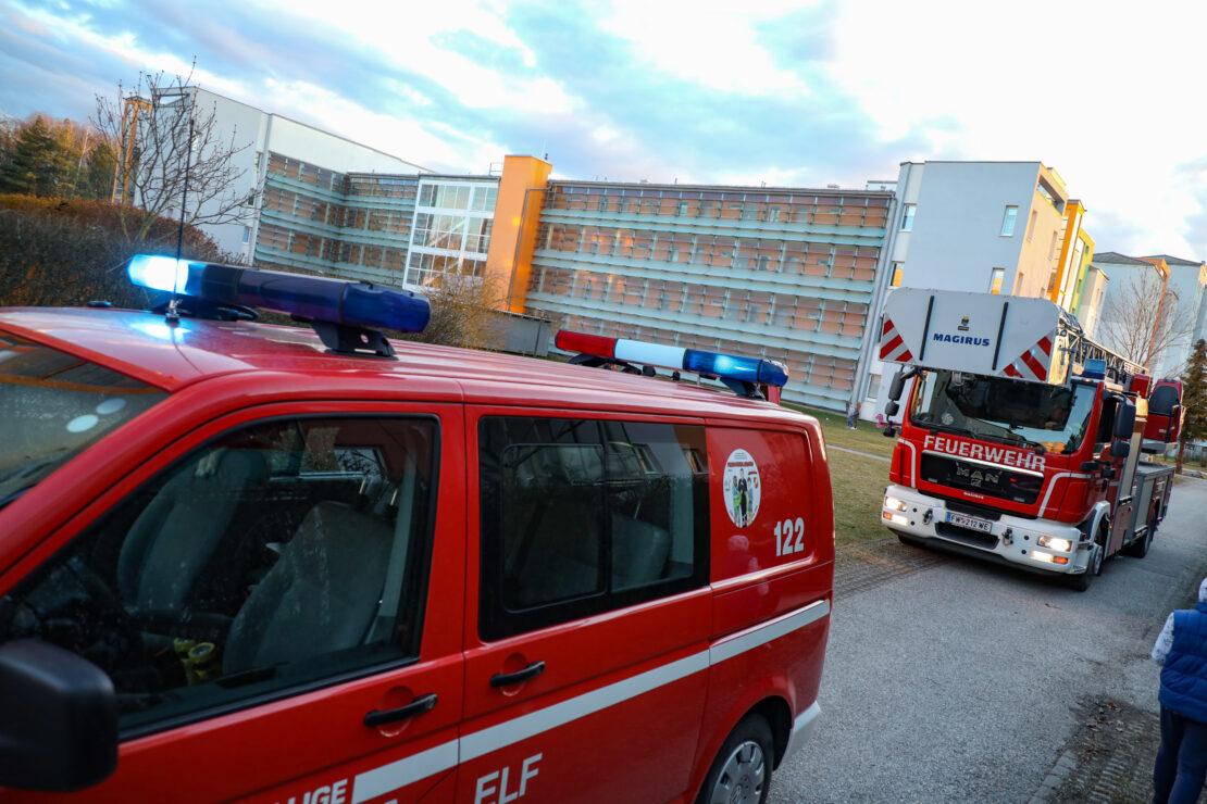 Einsatzkräfte bei gemeldetem Gasgeruch in einer Wohnhausanlage in Wels-Lichtenegg im Einsatz