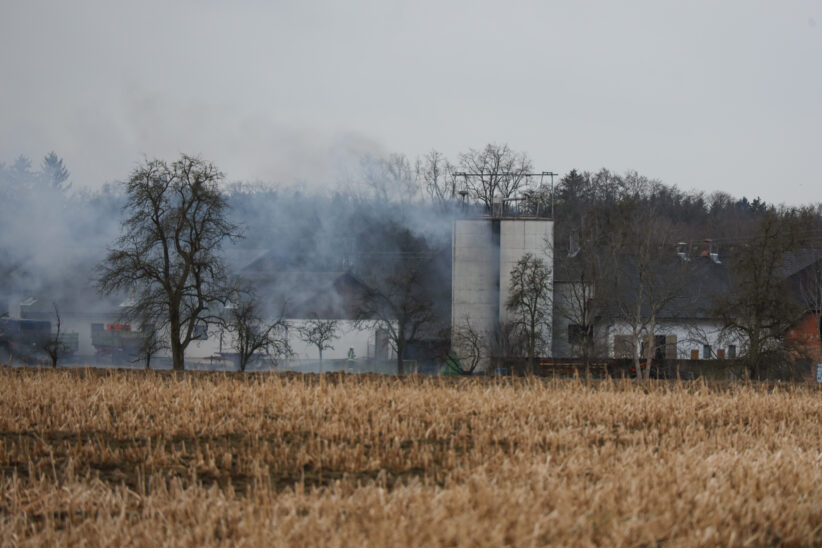 Gemeldeter Brand auf Bauernhof in Bad Wimsbach-Neydharting bewahrheitete sich zum Glück nicht
