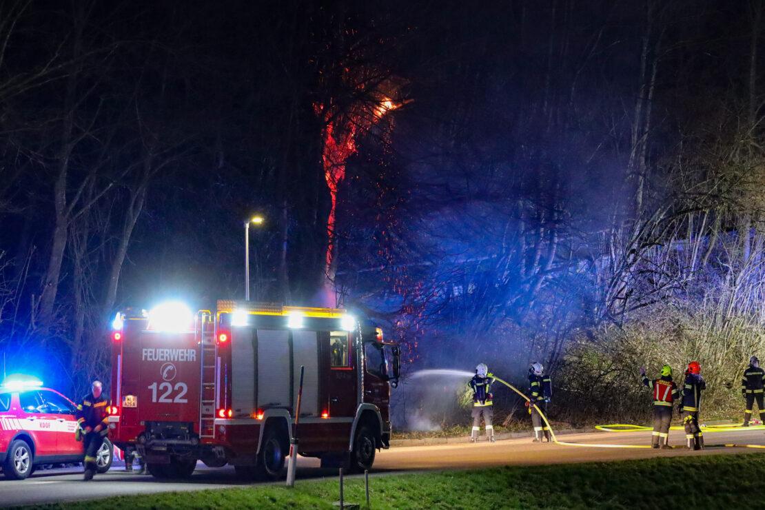 Schwieriger Löscheinsatz bei Brand eines Baumes in Thalheim bei Wels