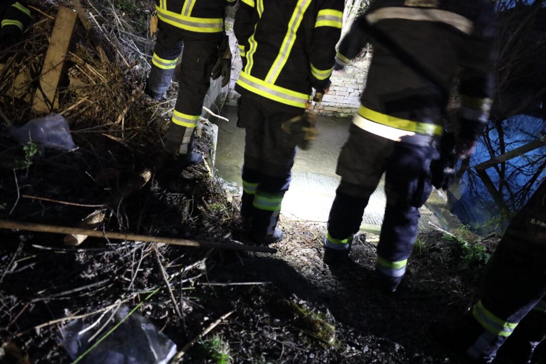 Biberbau: Verklausung bei Abfluss an einem Nebenarm des Welser Mühlbachs in Wels-Lichtenegg
