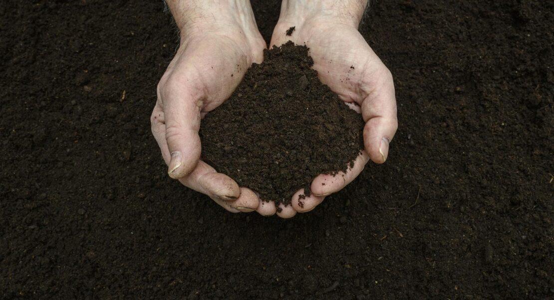 Kompostier Aktion Marchtrenk