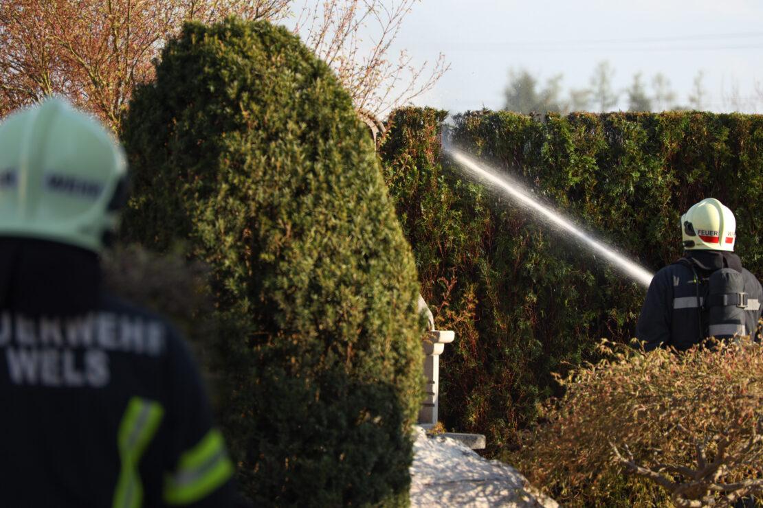 Feuerwehr bei Brand einer Thujenhecke in Wels-Puchberg im Einsatz