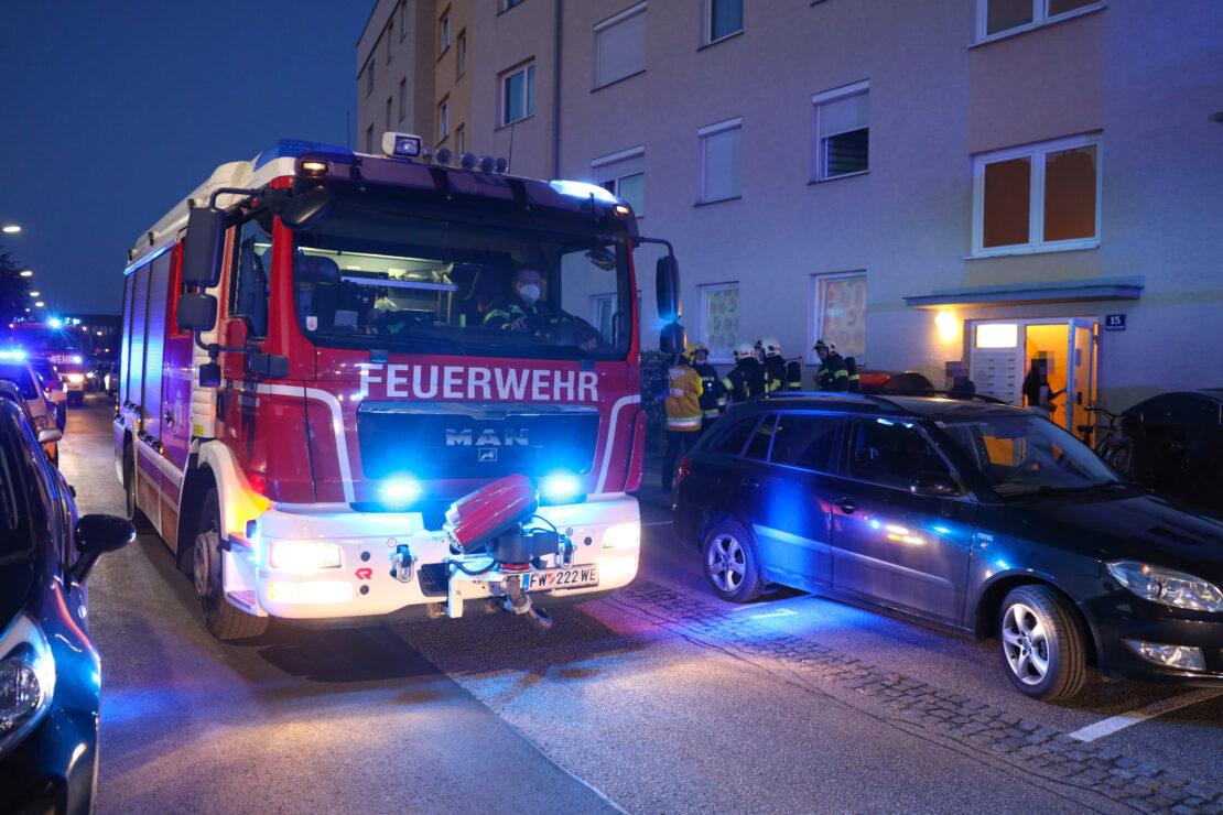 Einsatz der Feuerwehr nach wahrgenommener Rauchwolke in Wels-Vogelweide