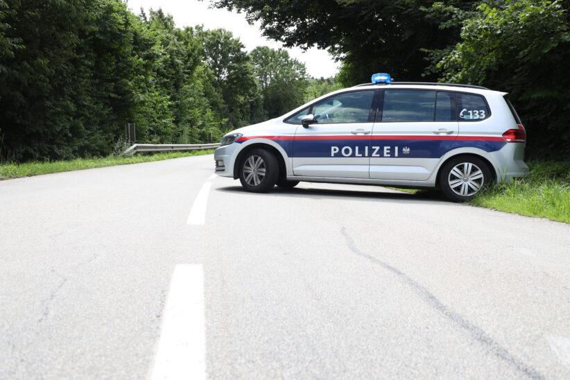Pferde auf Straße: Polizei sperrte Straßenabschnitt zwischen Gunskirchen und Pichl bei Wels