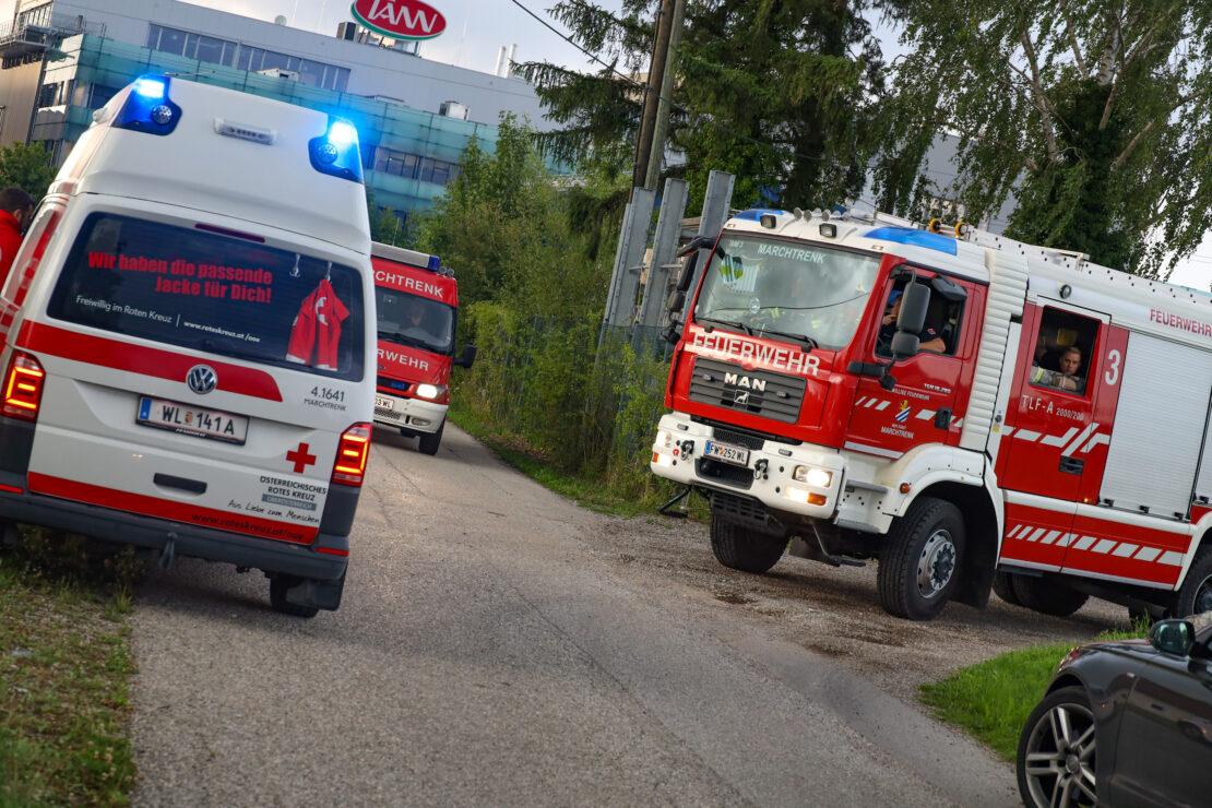 Lagerfeuer auf Firmenareal in Marchtrenk führt zu Einsatz zweier Feuerwehren