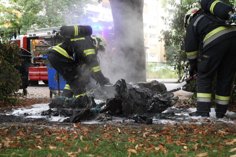 Neuerlicher Brand eines mobilen Toilettenkabine in einem Park in Wels-Neustadt
