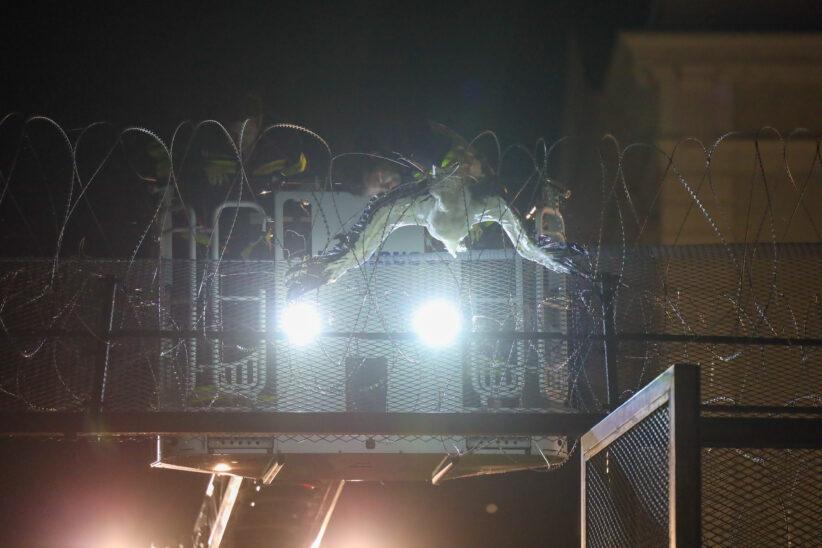 Stroch verendete nach Flug in Stacheldrahtzaun der Justizanstalt in Wels-Innenstadt