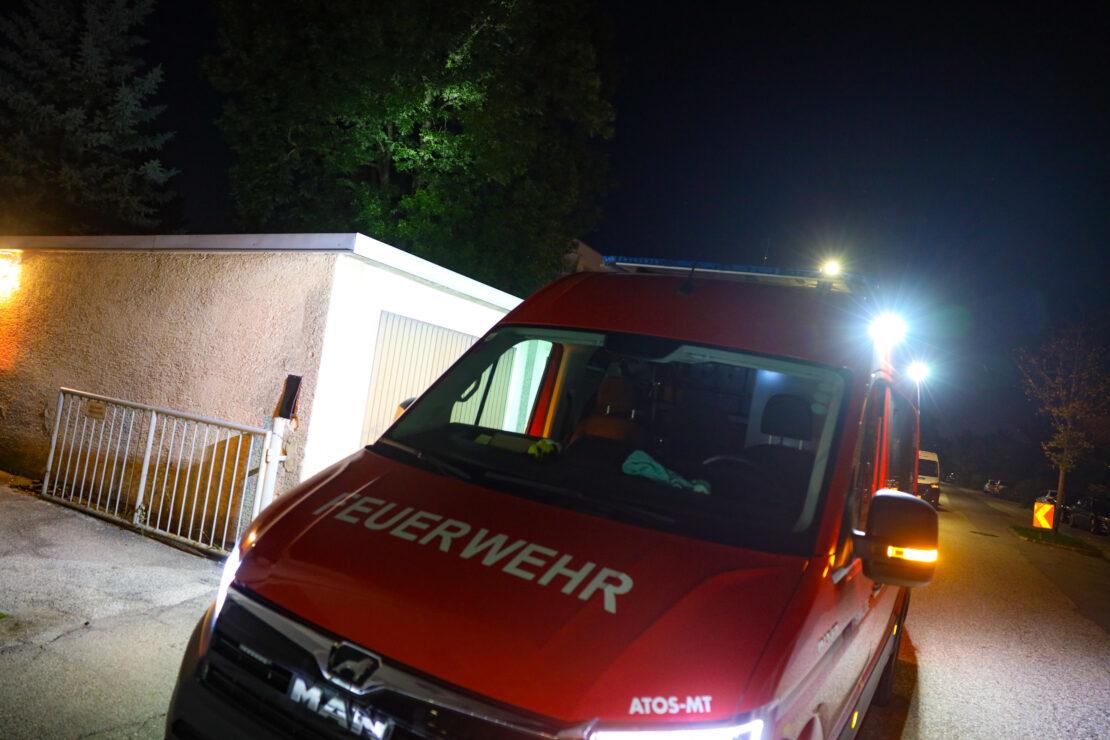 Katze am Baum: Feuerwehr bei Tierrettung in Wels-Vogelweide im Einsatz