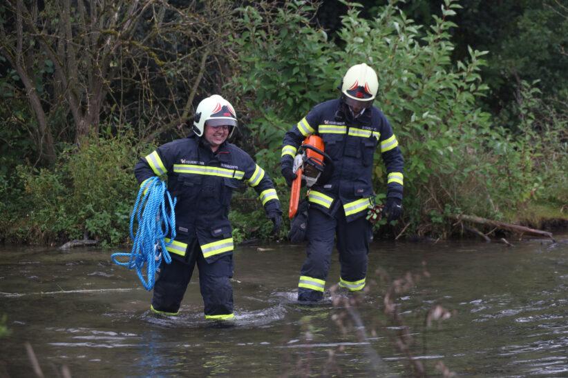 Ast staute Wasser des Mühlbachs in Wels-Lichtenegg auf