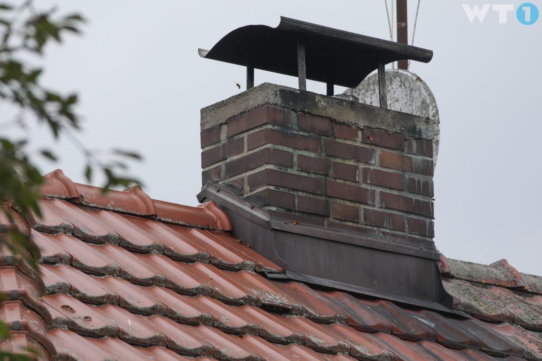 Hornissennest im Kamin führt zu Rauchentwicklung in einem Haus in Wels-Waidhausen