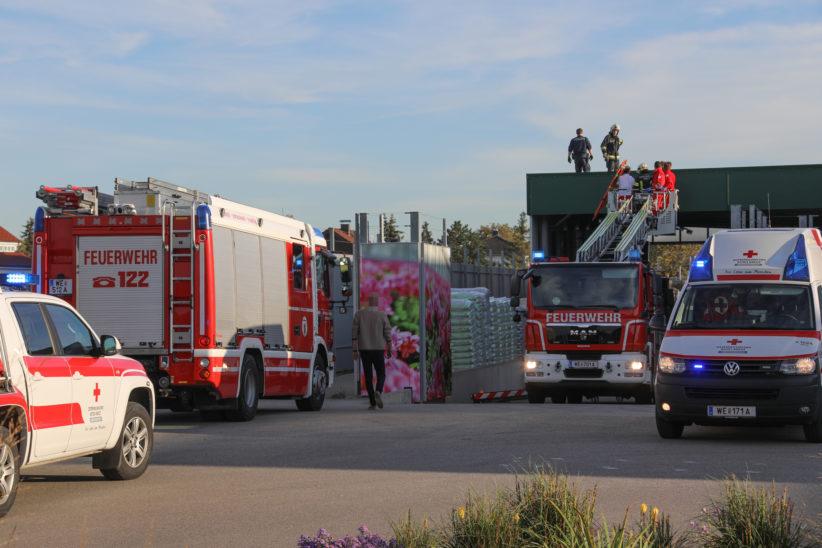 Zwei Tote: Fallschirmspringer über Wels-Neustadt kollidiert und bei Absurz tödlich verletzt