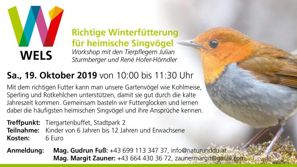Winterfütterung für heimische Singvögel
