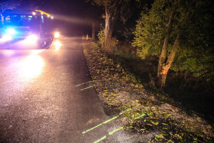 Lenker verletzt: Auto bei Unfall in Wels-Land frontal gegen einen Baum gekracht